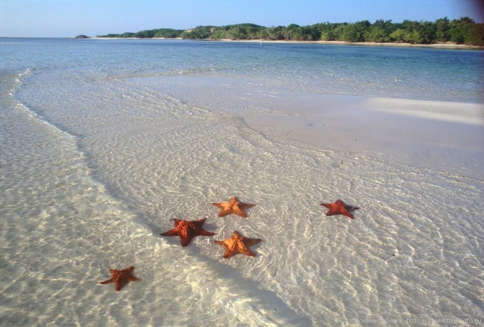 Куба является самым крупным из островов Карибского бассейна. . Отдых на Ку
